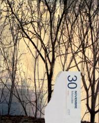 Diario Paseado (Otoño) - Árboles pelados
