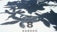 Diario de las sombras - 08 Níspero