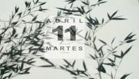 Diario de las sombras - 11 Bambú