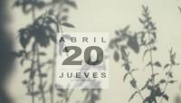 Diario de las sombras - 20 Mimosa
