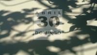 Diario de las sombras - 30 Higuera