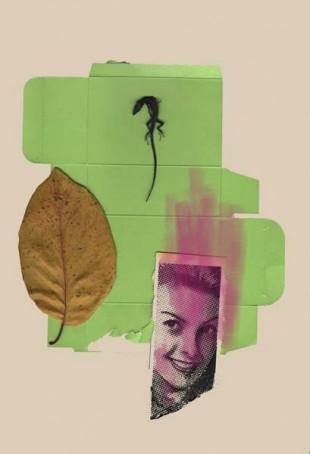 BODEGON LAGARTA collage digital 70x50cm