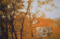 paisaje h. 15 te echaré de menos en otoño 97x146  imp. digital y oleo - lienzo