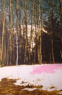 paisaje v. 07 rastros de carmin  195X130 imp. digital y oleo - lienzo