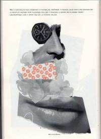 f2016 Fanzine INSECUI (Colectivo)