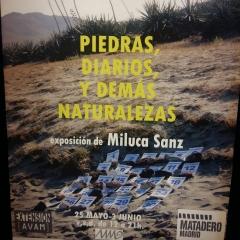 2018 Piedras, Diarios y Demás Naturalezas