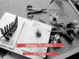 Diario de Otros – Espacio Valverde
