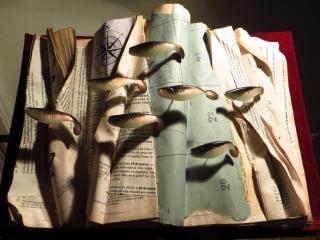Diario sumergido del Nautilus